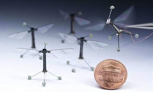 RoboBee Smallest Drone
