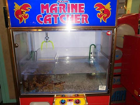 Lobster Claw Machine