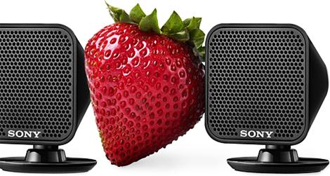 Sony Bravia Speakers