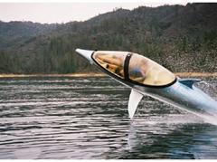 Dolphin Submarine