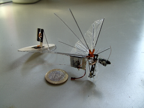 RC Delfly Dragonfly