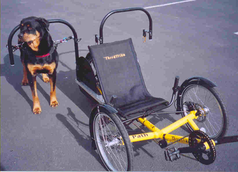 dog powered trike