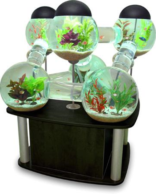 At AquaCave, we offer a large selection of premium aquarium supplies for both, freshwater and saltwater fish tank enthusiasts. The prices and quality of our fish tank