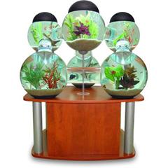 aquarium balls