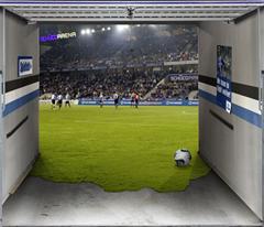 Cool Garage Door Graphics Gadgetking Com