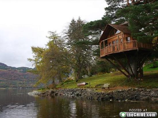 Amazing Lakefront Tree House