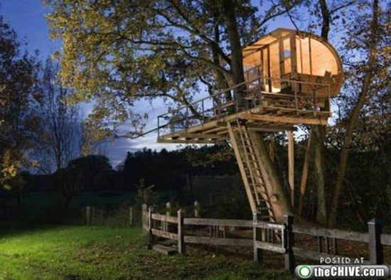 Neat Tree House
