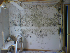 Drywall Class Action Legal