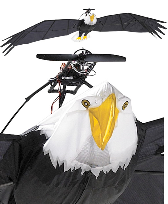 Remote Control Bird Eagle