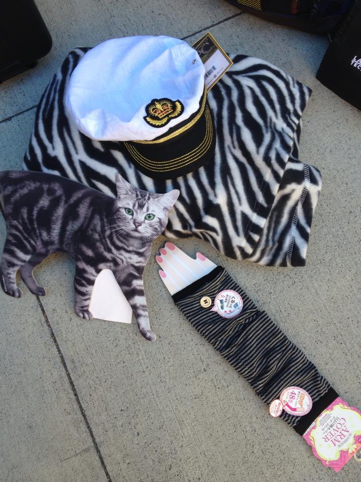 Hat Cardboard Cat Arm Cover