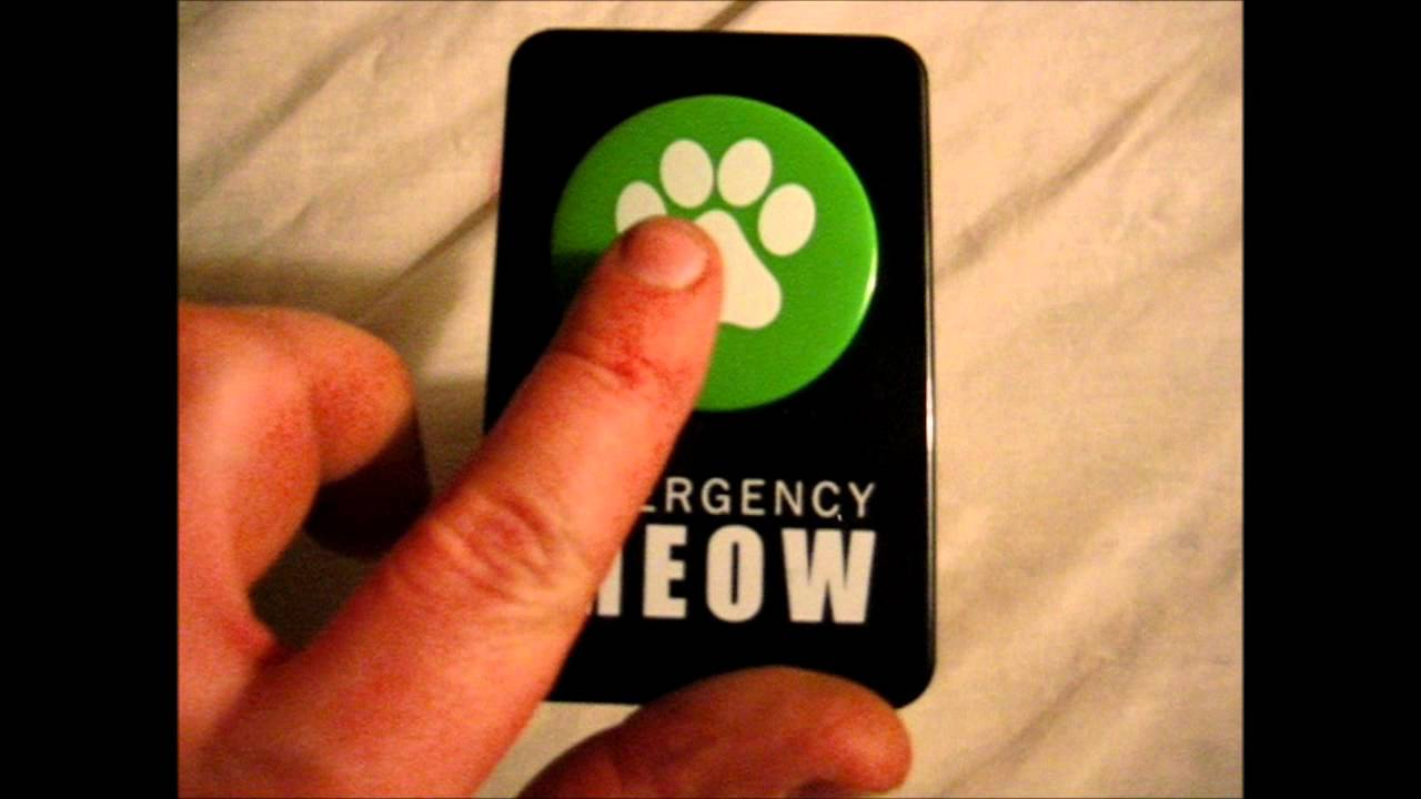 emergency meow button