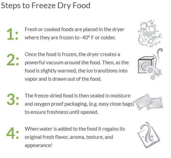 How_To_Freeze_Dry_Food