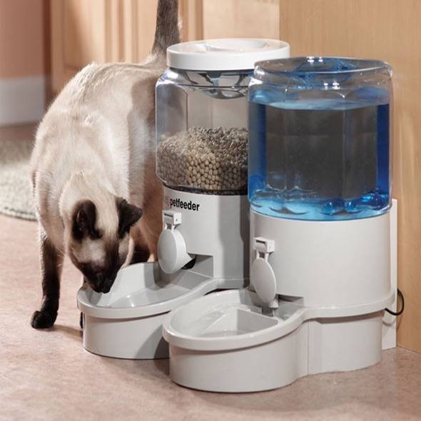 Ergo Auto Pet Feeder 2000gs Review Gadgetking Com