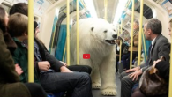 Fake London Polar Bear