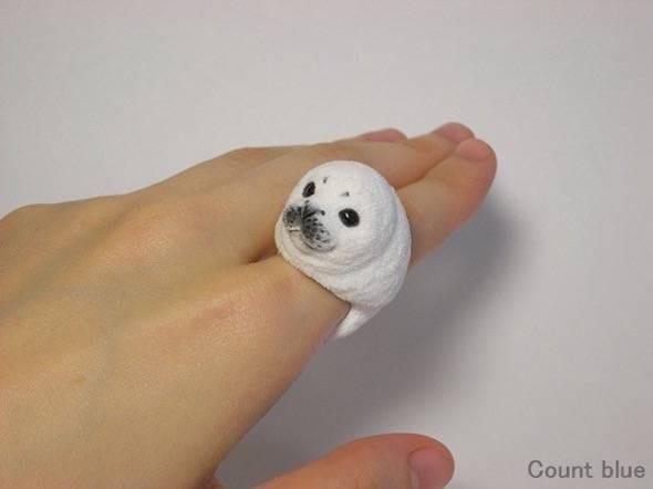 animal-rings-seal