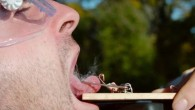 mouse-trap-on-tongue-slow-motion-video