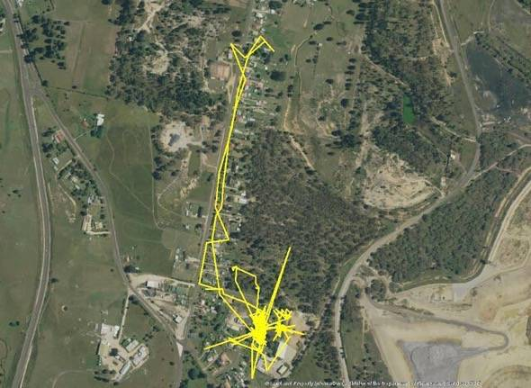 Cat Tracking GPS 5