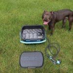 RinseKit Pressurized Portable Shower Sprayer Dog Wash