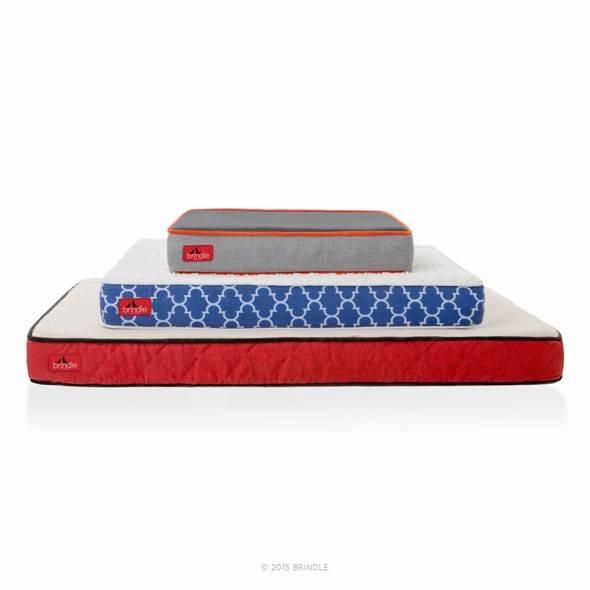 Brindle Waterproof Designer Memory Foam Pet Bed 3