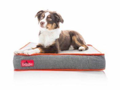 Brindle Waterproof Designer Memory Foam Pet Bed 4