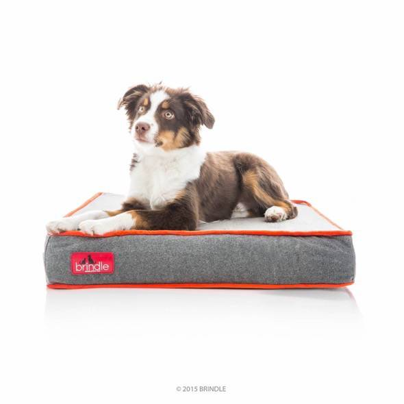 Brindle Waterproof Designer Memory Foam Pet Bed 4
