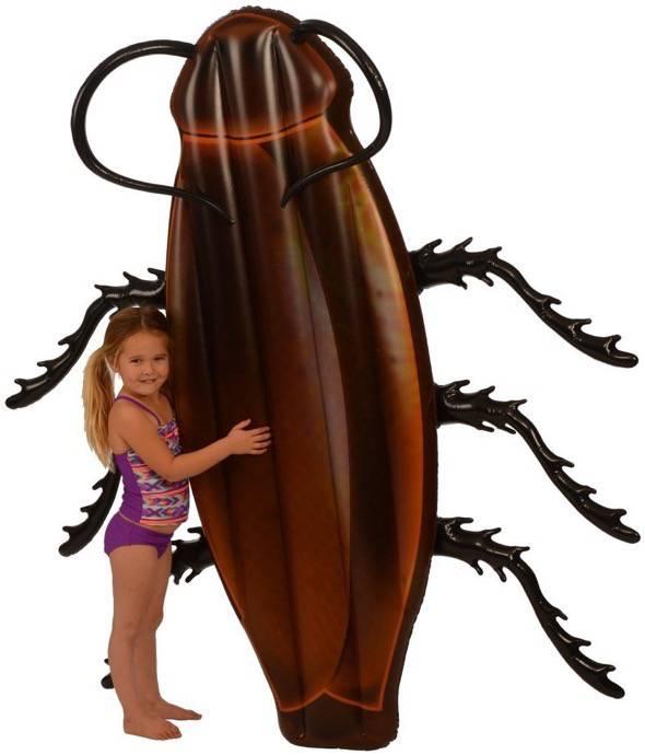 Cockroach Pool Float 3