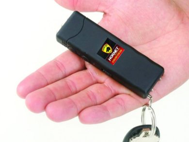 Guard Dog Security Hornet Keychain Stun Gun In Hand