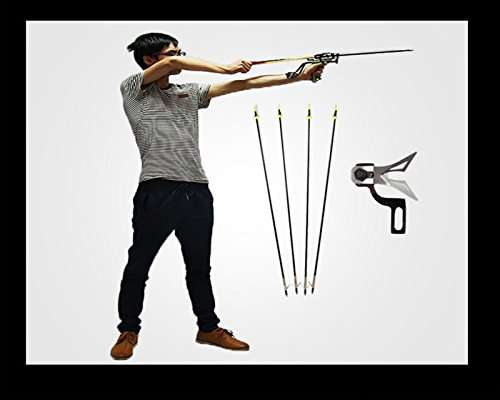 Assolar SS-12 Laser Slingshot Arrows