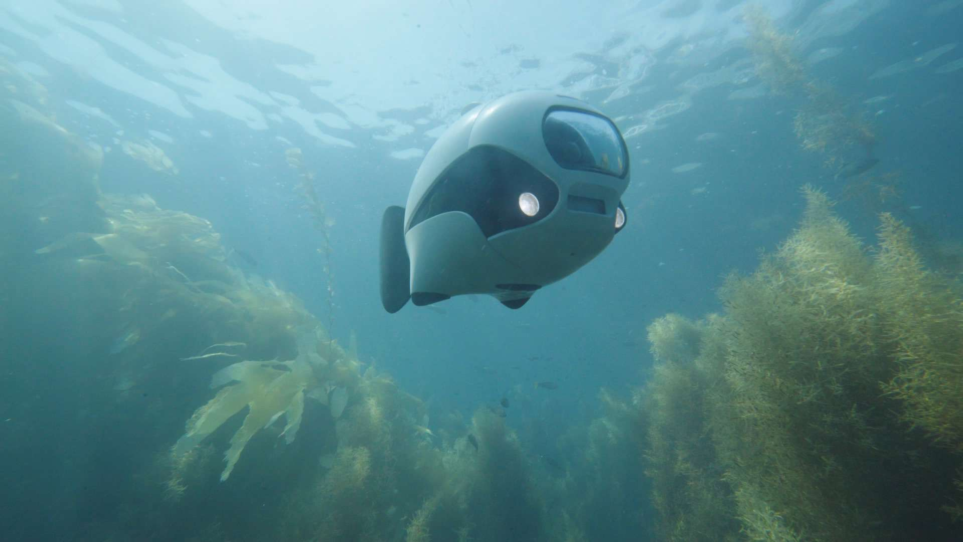 BIKI Bionic Wireless Underwater Fish Drone 5