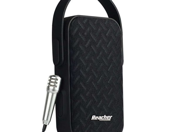Reacher Portable Karaoke Machine Microphone