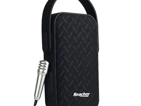 Reacher Portable Karaoke Machine Microphone