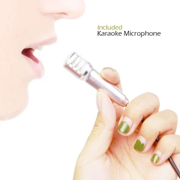 Reacher Portable Karaoke Machine with MIc