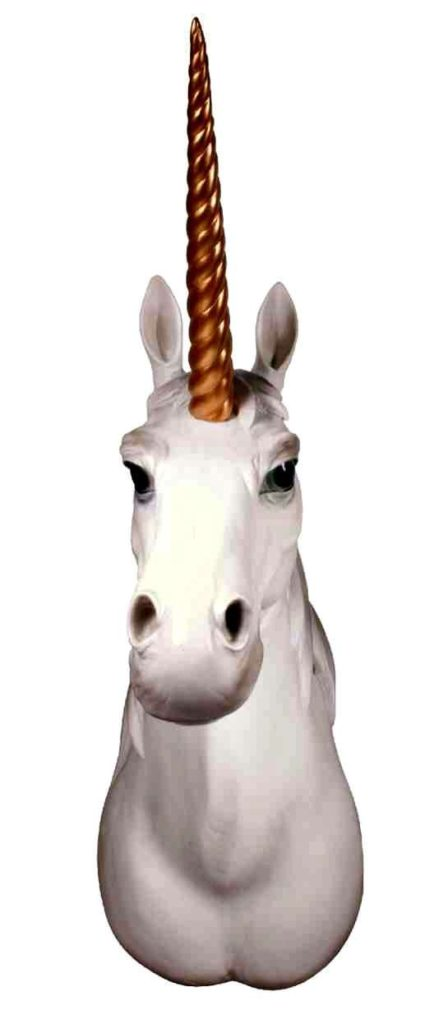 Unicorn Head Wall Mount 2