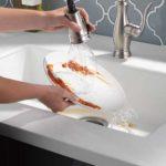 Delta ShieldSpray Faucet 2