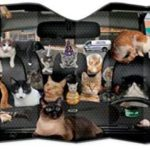 Car full of cats sunshade Shade