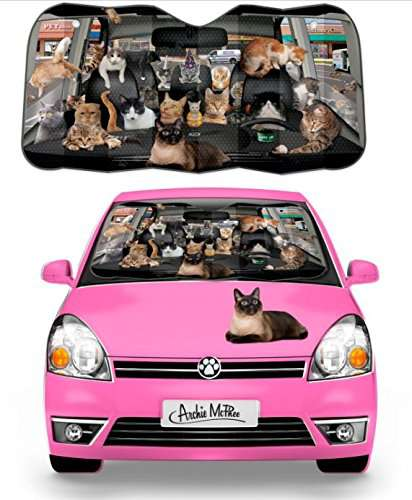 Car full of cats sunshade Window