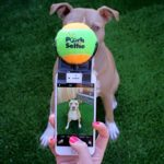Pooch Selfie Dog Selfie Stick 3