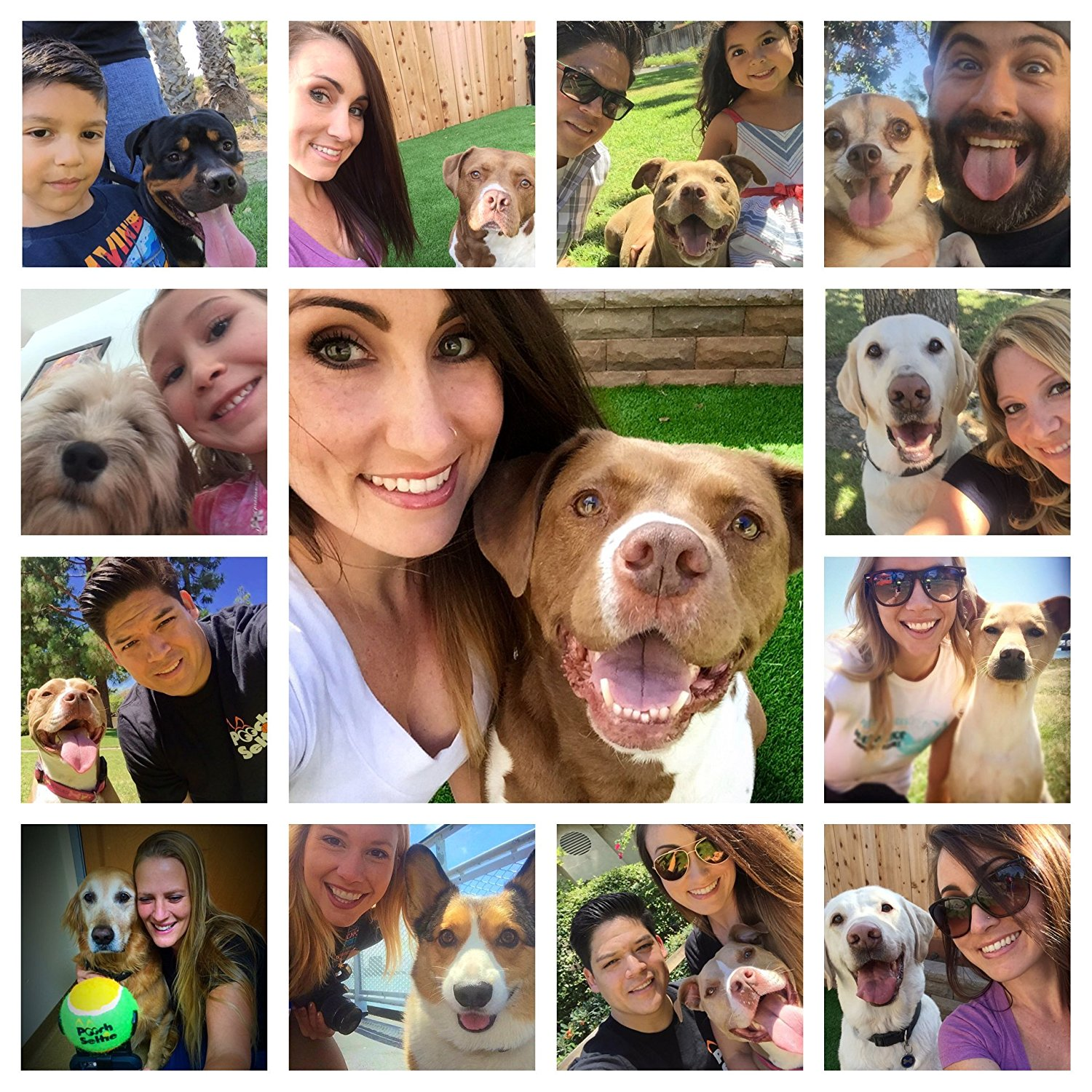 Pooch Selfie Dog Selfie Stick Samples