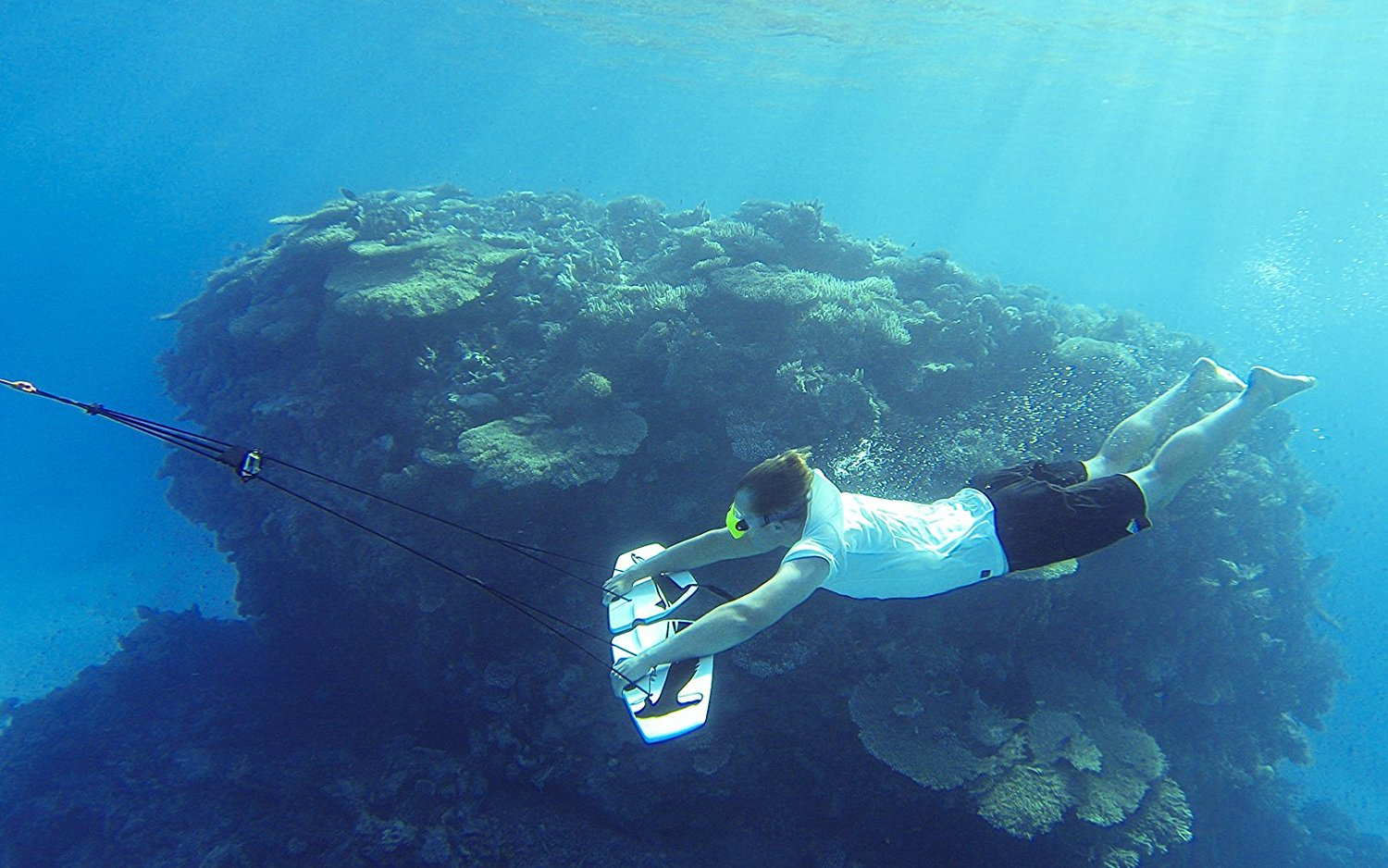 Subwing Underwater Flying Wing Coral Reef