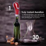 Waerator Electric Wine Pump Aerator 2