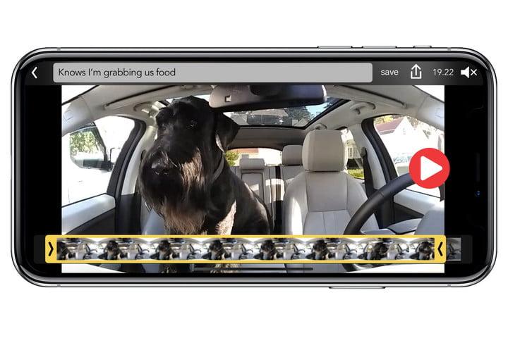 Owl Car Cam App