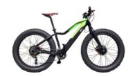 easy-motion-evo-awd-big-bud-ebike-side