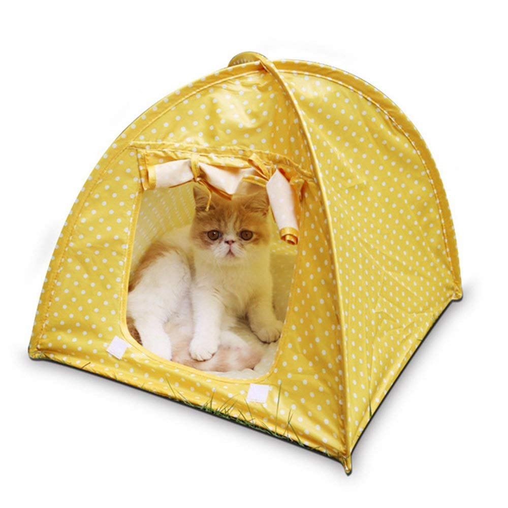 Yellow Cat Camp Tent