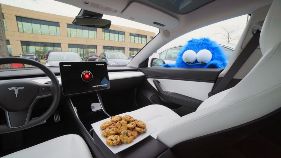 Tesla Sentry Mode Cookie Monster