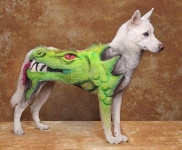 dog character shaving husky dragon