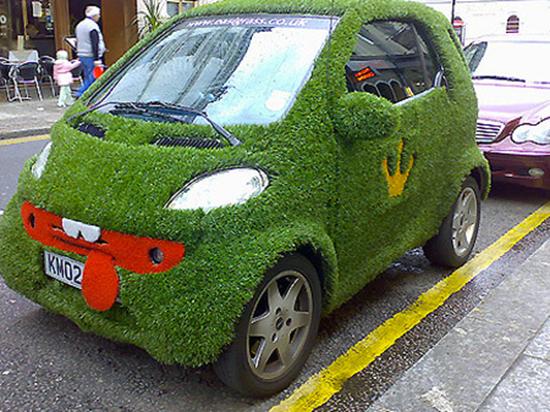 Grass SMART Car