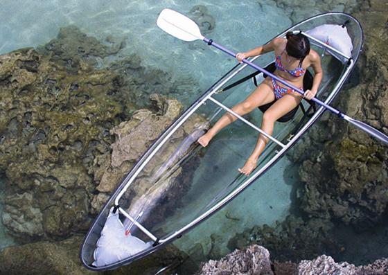 Molokini Clear Canoe