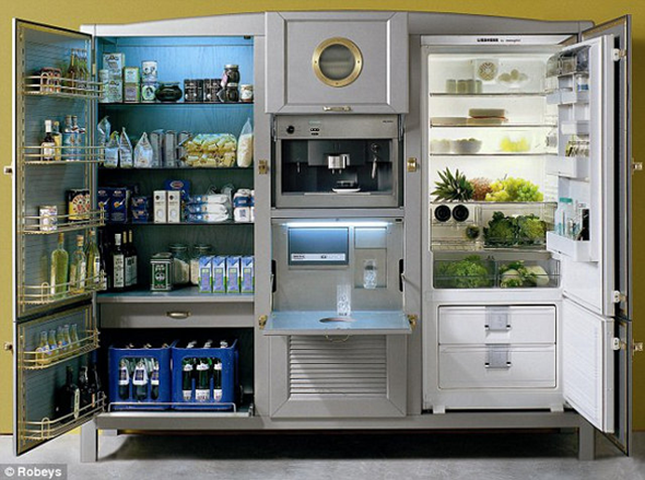 What Does A 40 500 Refrigerator Look Like Gadgetking Com